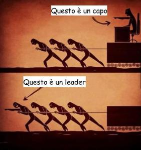 capo vs leader